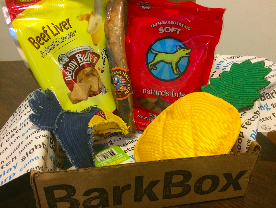 BarkBox Subscription Box Review